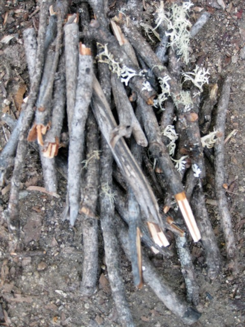 larger sticks
